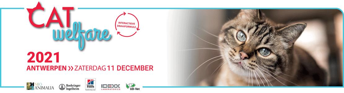 Cat Welfare 2021 Antwerpen